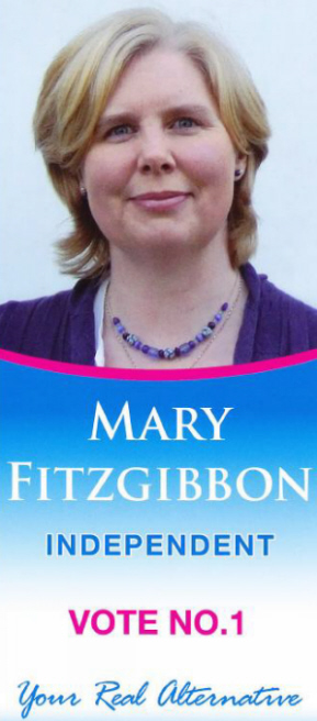 campaign literature templates - mary fitzgibbon irish election literature