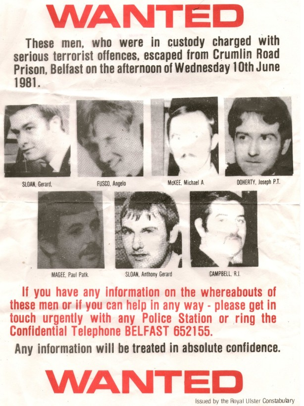 Wanted1981