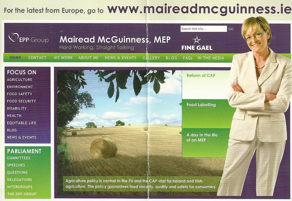 mcguinnesswebsite2
